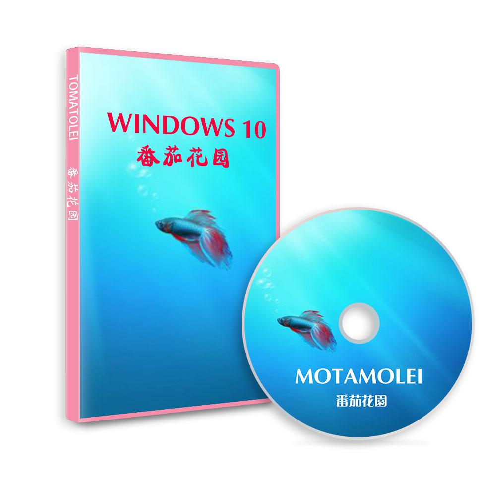 番茄花园 Windows 10 专业版64位 2021.10